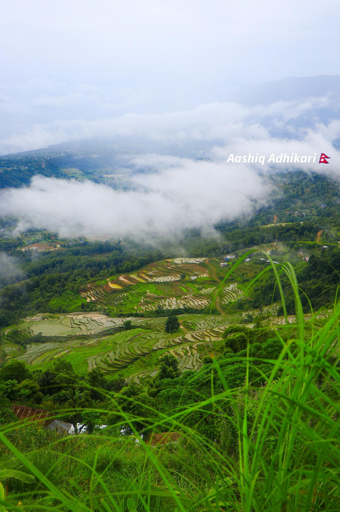 Greenary in Palungtar, Gorkha.